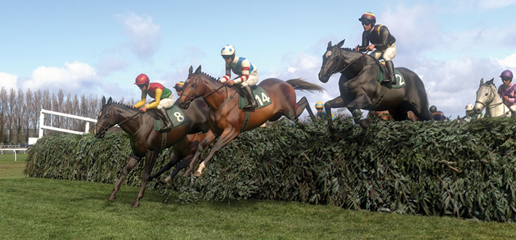 Virtual Grand National: Potters Corner takes victory over bookies hot favourite.